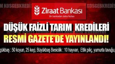 Ziraat Bankası Düşük Faizli Tarım ve Hayvan Kredisi Şartları