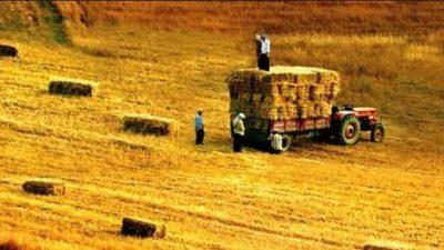 Tarım Kredisi Veren Bankalar (Güncel)