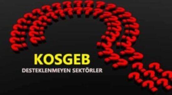 Kosgeb Desteklenmeyen Sektörler Listesi (Güncel)