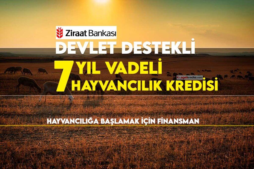 Ziraat Bankası 7 Yıl Vadeli Hayvan Kredisi