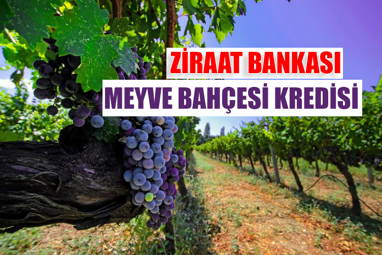 Ziraat Bankası Meyve Bahçesi Kredisi Şartları